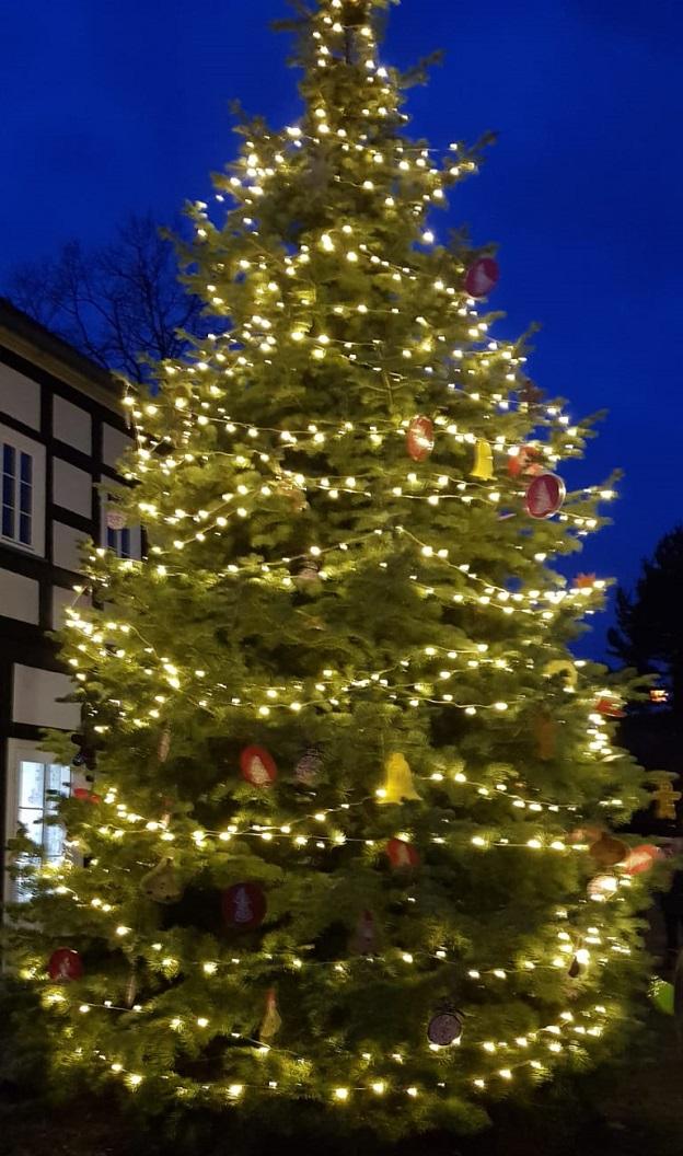 Der geschmückte Weihnachtsbaum vor dem Haus Kulick